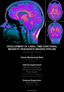 Development-of-real-time-fMRI-pipeline_at_Donders_institute_Internship-report-Adnan-Niazi